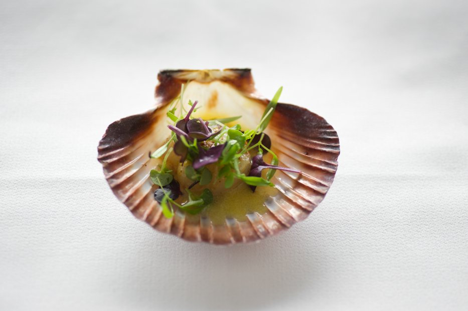 roasted scallops on the half shell, harissa butter, preserved lemon, microherbs