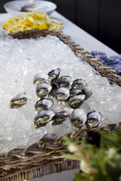 freshly shucked oysters. photo credit sarah wood photography