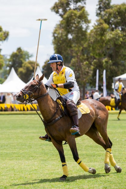 2013 paspaley polo in the city. photo credit sarah wood photography