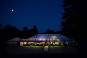 dog flat wedding, royal botanic gardens, photo credit sarah wood photography